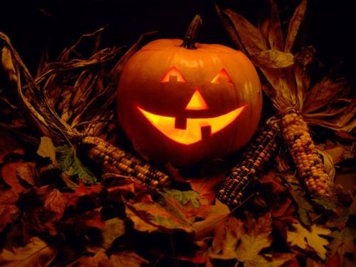http://www.costume-toys.ru/data/images/Halloween.jpg